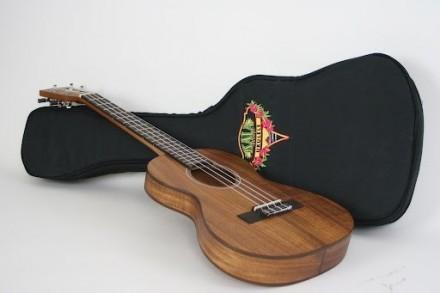 Kala Thinline Travel Ukulele Concert Akacia