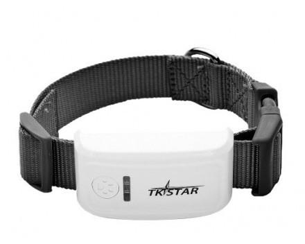 TKSTAR-2 GPS-spårare med halsband