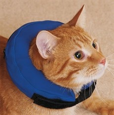 Procollar katt 20-30 cm