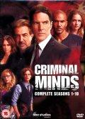 Criminal Minds - Season 1-10 (Import Sv.Text)