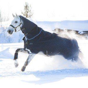 Horseware Amigo Bravo 12 Heavy Plus Vintertäcke 400g