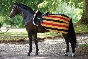 Horseware Rambo Exercise Ridtäcke